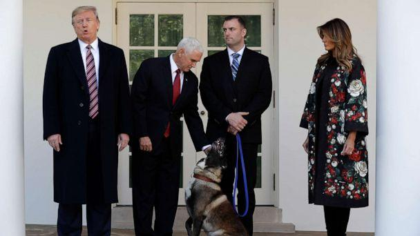 PHOTO: President Donald Trump, Vice President Mike Pence and first lady Melania Trump present Conan, the military working dog injured in the successful operation targeting Islamic State leader Abu Bakr al-Baghdadi. (Evan Vucci/AP)