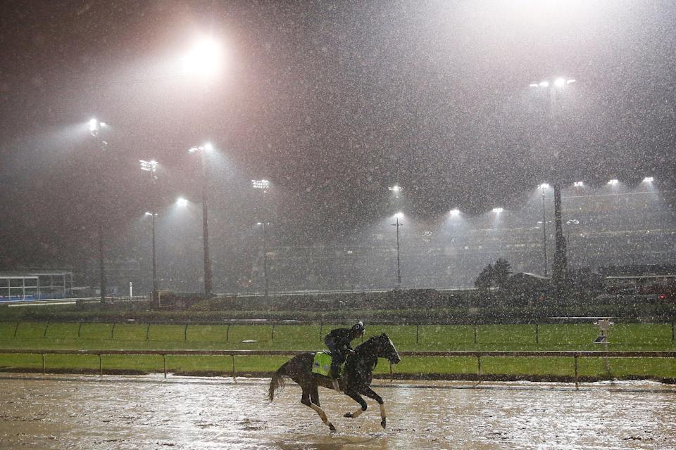 LOUISVILLE, KENTUCKY - MAY 03: Tacitus trains on the track during morning workouts in preparation for the 145th running of the Kentucky Derby. (Getty Images)