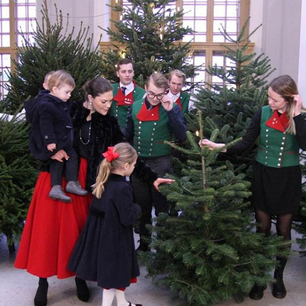 Princess Victoria and her children welcoming Christmas trees to the royal palace