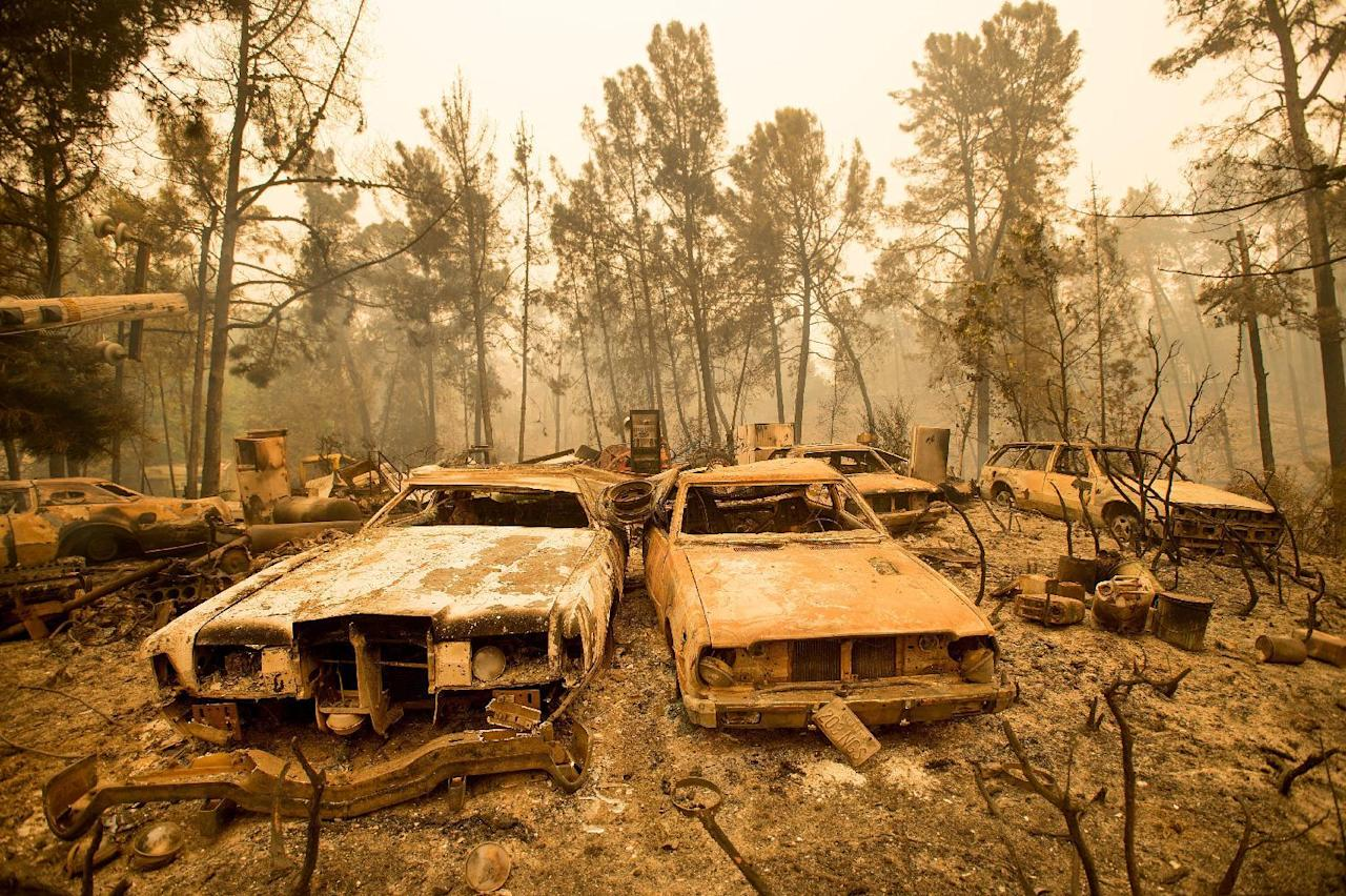 Vintage cars line a property after the Loma fire burned through Loma Chiquita Road near Morgan Hill, Calif., on Wednesday, Sept. 28, 2016. A heat wave stifling drought-stricken California has worsened a wildfire that burned some buildings and forced people from their homes. (AP Photo/Noah Berger)