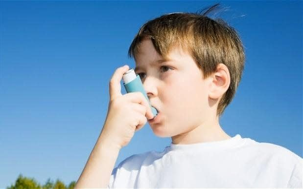 Approximately one in 11 children in the UK suffers from asthma - Telegraph