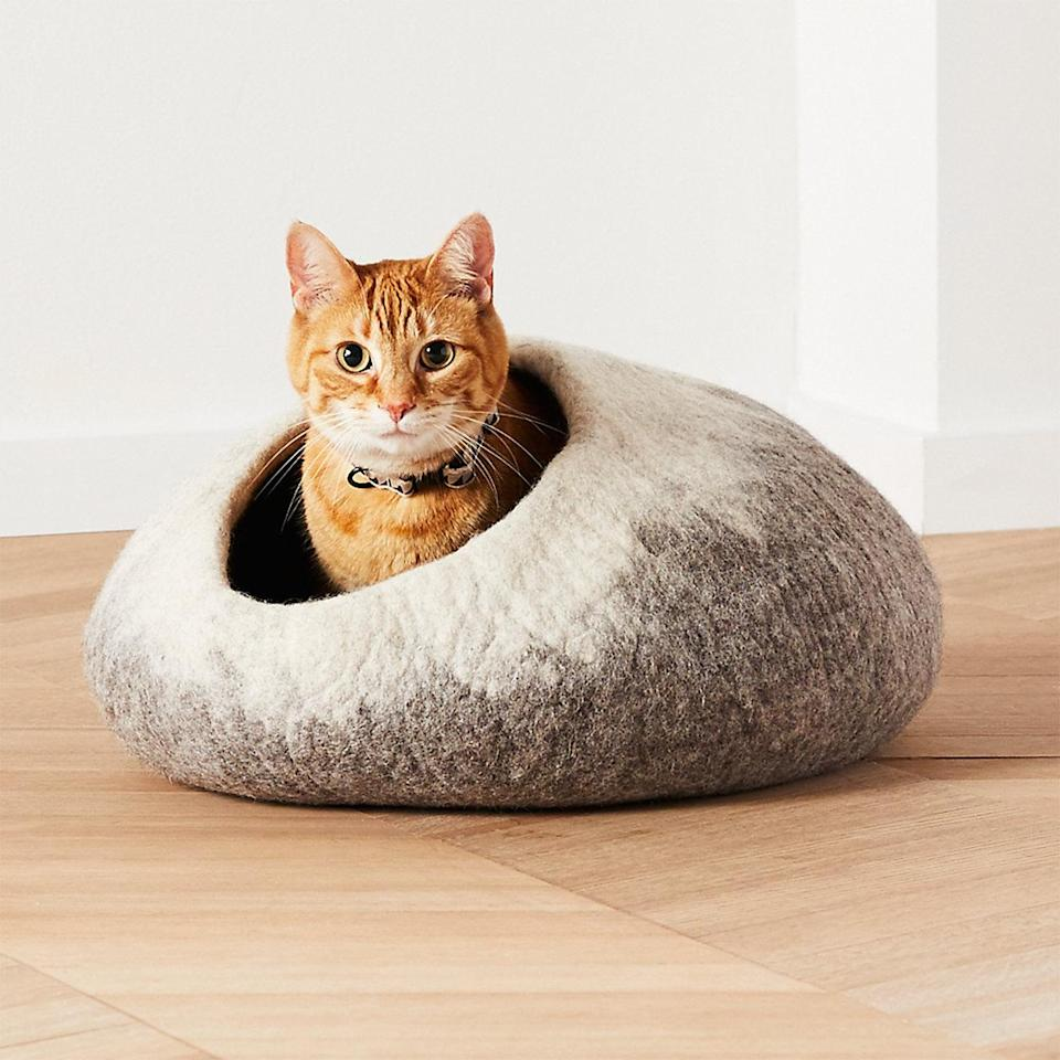 """<p>If your cat likes to snooze in a secure, enclosed space, consider a cave-style bed. Handmade by artisans in Nepal, this super lightweight bed is made from natural felted wool that retains its natural lanolin to condition paws and keep your cat's fur healthy. """"Felt is strong enough to keep its shape yet flexible, so your cat can really cuddle up and keep warm,"""" says Cunningham.</p> <p><strong><em>Shop Now:</em></strong><em> Ombre Cat Cave, $70, <a href=""""https://www.anrdoezrs.net/links/9104911/type/dlg/sid/MSL10ModernCatBedsforaWellDesignedHomeaharperCatGal7985721202010I/https://www.crateandbarrel.com/ombre-cat-cave/s615922?localedetail=US&storeid=212&a=1552"""" rel=""""nofollow noopener"""" target=""""_blank"""" data-ylk=""""slk:crateandbarrel.com"""" class=""""link rapid-noclick-resp"""">crateandbarrel.com</a></em><em>.</em></p>"""
