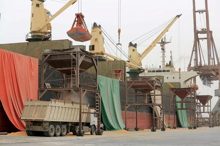 FILE PHOTO: A shipment of grain is unloaded at the Red Sea port of Hodeidah