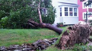 Tropical storm Leslie has begun lashing Newfoundland with heavy winds and rain.