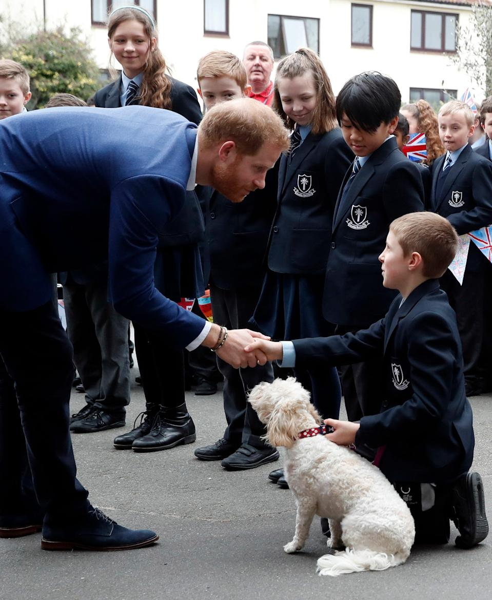 Prince Harry London school