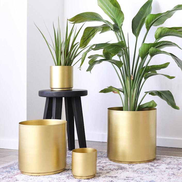 """Add a metallic accent to a flashy fern or sassy snake plant. $50, Etsy. <a href=""""https://www.etsy.com/listing/632635202/brass-metal-planter-10-8-or-6-5-set"""" rel=""""nofollow noopener"""" target=""""_blank"""" data-ylk=""""slk:Get it now!"""" class=""""link rapid-noclick-resp"""">Get it now!</a>"""