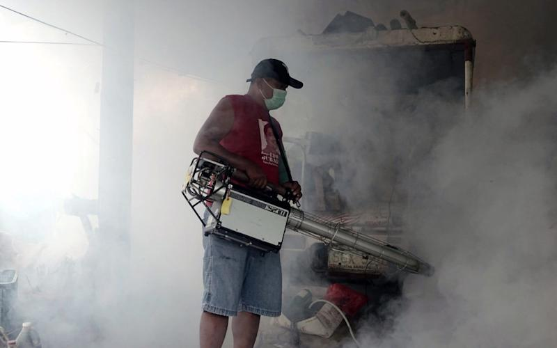A government worker uses a fumigation device to get rid of mosquitoes - REX