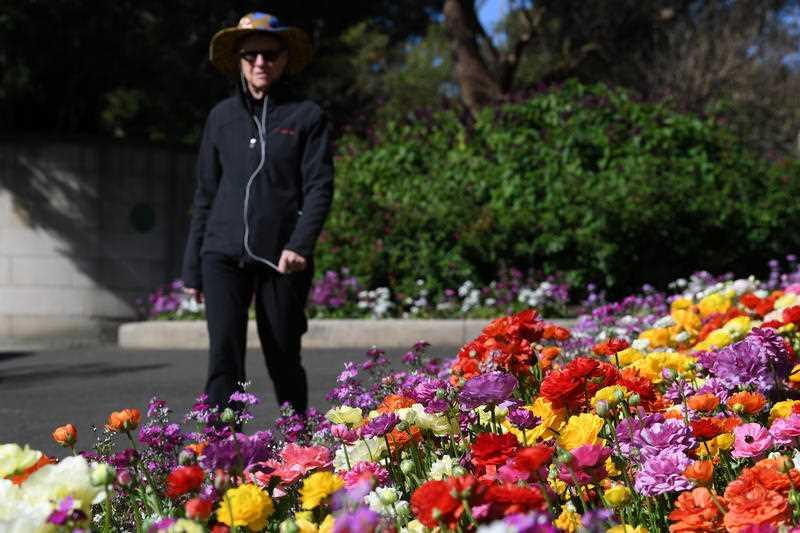 Visitors to the Royal Botanic Gardens enjoy the splash of cookout from blossoming flowers on the first day of spring in Sydney.