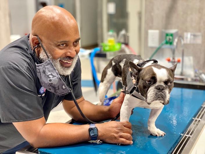 """Draper with Bella, a French Bulldog, at The Village Vets on Oct. 8. Bella's front leg is """"back to 100% now, fortunately,"""" says Draper. <span class=""""copyright"""">Courtesy Will Draper</span>"""