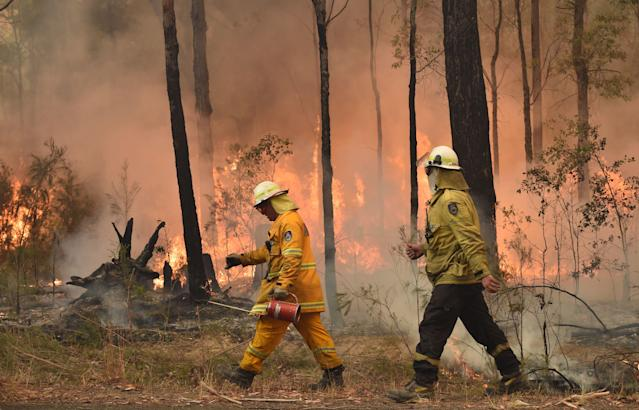 Firefighters create a back burn ahead of a fire front in the New South Wales town of Jerrawangala. (Photo by PETER PARKS / AFP) (Photo by PETER PARKS/AFP via Getty Images)