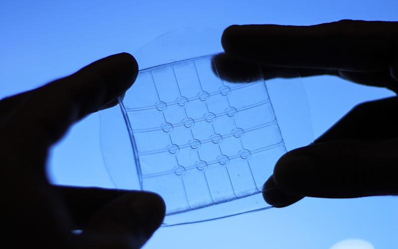 A new material will allow bendy tablets  - University of British Columbia