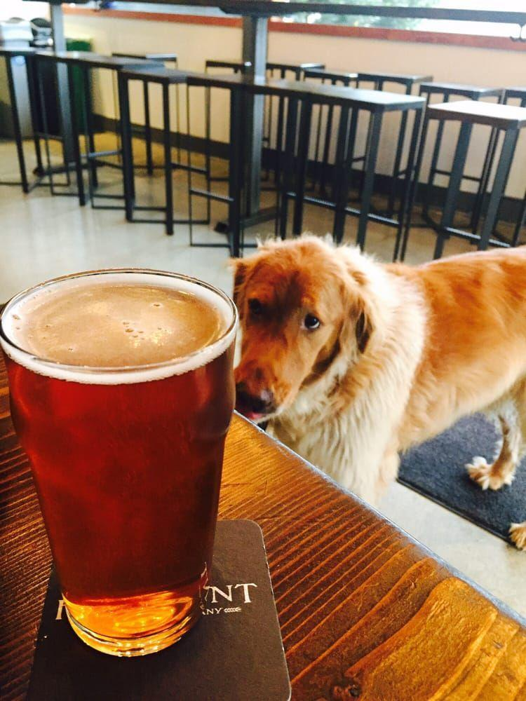 """<p><a href=""""http://www.yelp.com/biz/hellbent-brewing-company-seattle"""" rel=""""nofollow noopener"""" target=""""_blank"""" data-ylk=""""slk:Hellbent Brewing Company"""" class=""""link rapid-noclick-resp"""">Hellbent Brewing Company</a>, Seattle</p><p>""""I love this brewery! I love that it's a close drive to where we live. And I love even more that it's 21 and over only and that it's dog friendly (even though I don't have a dog). The beer is great and the atmosphere is always chill. It's a great spot to hang out in the summer (wonderful patio) or winter. Cheers!"""" - Yelp user <a href=""""https://www.yelp.com/user_details?userid=zw2n-06nerMU9Gu2pi6USg"""" rel=""""nofollow noopener"""" target=""""_blank"""" data-ylk=""""slk:Jamilah W."""" class=""""link rapid-noclick-resp"""">Jamilah W.</a></p>"""