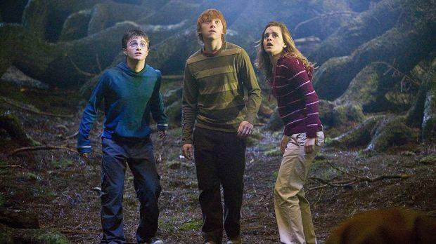 """This """"Harry Potter"""" yoga class is the stuff of dreams"""