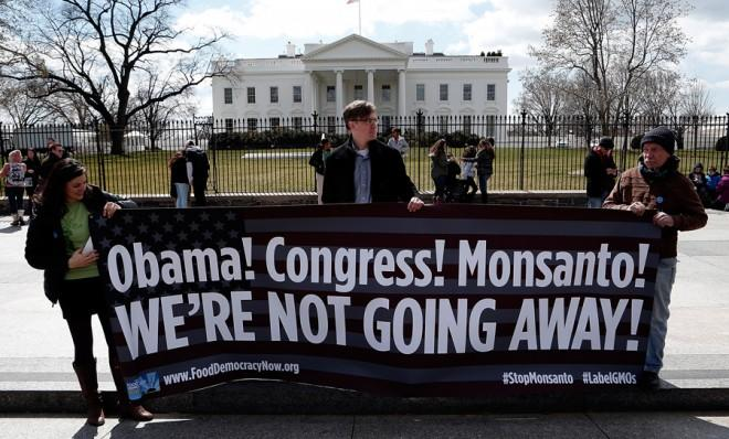 Activists protest against agricultural biotech company Monsanto in Washington, D.C., on March 27.