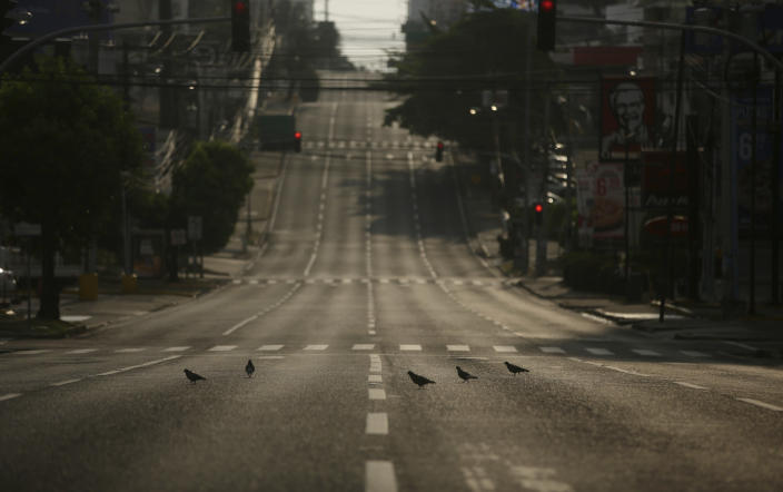 Doves stand on an empty street devoid of traffic during a day of total curfew imposed by the Panamanian government to confront the spread of the new coronavirus in Panama City, early Sunday, April 5, 2020. (AP Photo/Arnulfo Franco)