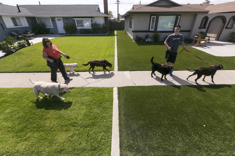 In this May 6, 2015, file photo, local resident Martha Mattison, left, helps out her son, Jacob with his dog walking business, as they walk past recently installed synthetic grass, seen at right, in Garden Grove, Calif. California water officials say they will consider dropping a mandate requiring conservation in the state's fifth year of drought. The State Water Resources Control Board on Tuesday, Feb. 20, 2018, will vote on whether to give local water districts control of setting their own conservation targets. (AP Photo/Damian Dovarganes, File)