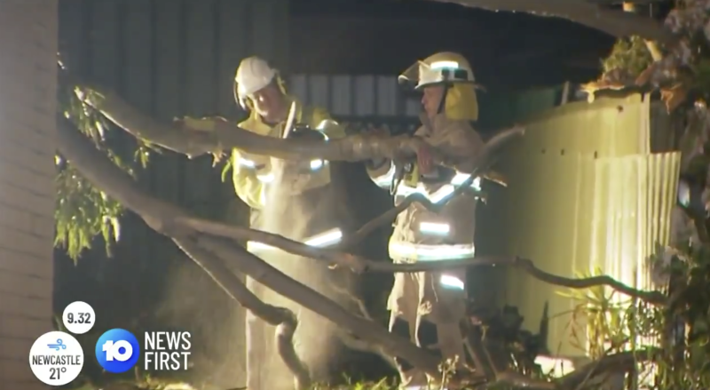 Fire fighters clear a tree off a home in Morphett Vale, Adelaide.