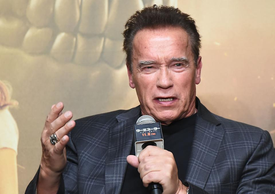 Arnold Schwarzenegger (pictured in 2019) shared a powerful statement reflecting on the Capitol riot. (Photo: Jun Sato/WireImage)