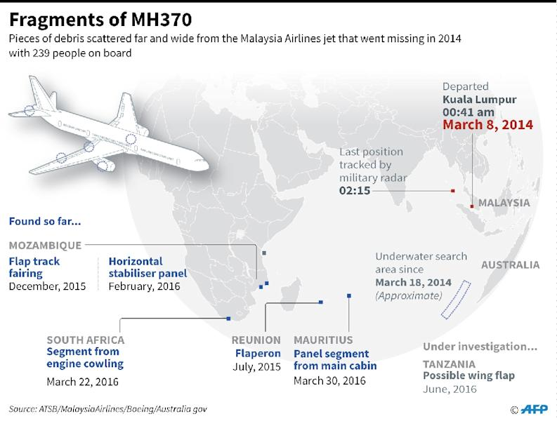 Flight MH370 vanished in 2014 with 239 people on board (AFP Photo/)