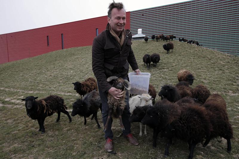 """In this photo dated Thursday, April 4, 2013, Sylvain Girard, owner of """"Ecomouton"""" shows his flock used to graze the lawns in replacement of lawn mowers around a truck warehouse at Evry, south of Paris. Paris is enlisting the help of a small flock of sheep to keep the city's grass trim to replace gas-guzzling lawnmowers. (AP Photo/Francois Mori)"""