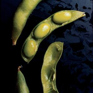 """<div class=""""caption-credit""""> Photo by: Gourmet, Romulo Yanes</div><b>EDAMAME</b> <br> <br> <i>Slimming superpowers:</i> The green soybeans supply 17 g of protein per cup, and your body torches more calories digesting protein than it does processing carbs and fat. <br> <br> <i>The amazing proof</i>: Researchers from the Federal University of Vicosa found that people burned about 70 more calories per day when their A.M. meal contained soy protein versus other types of protein. Cool beans!"""