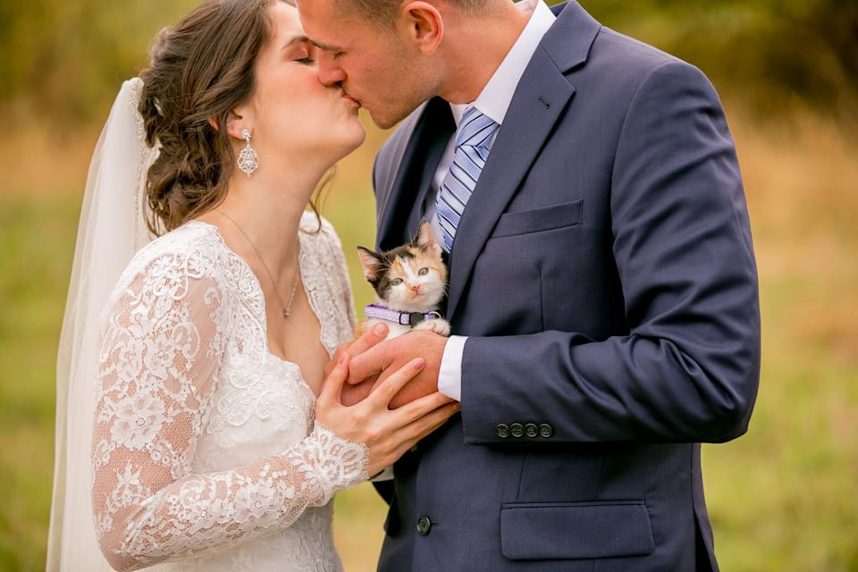 """Chloe the calico was the best wedding surprise. (Photo: <a href=""""https://www.facebook.com/wildnwonderfulphotography/"""" target=""""_blank"""">Wild and Wonderful Photography</a>)"""