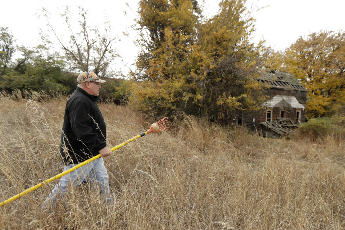 In this Oct. 28, 2019, photo, amateur botanist David Benscoter, of the Lost Apple Project, carries his apple picking pole as he walks while collecting apples in an orchard at a remote homestead near Pullman, Wash. Benscoter and fellow amateur botanist EJ Brandt recently learned that their work in the fall of 2019 has led to the rediscovery of 10 apple varieties in the Pacific Northwest that were planted by long-ago pioneers and had been thought extinct. (AP Photo/Ted S. Warren)