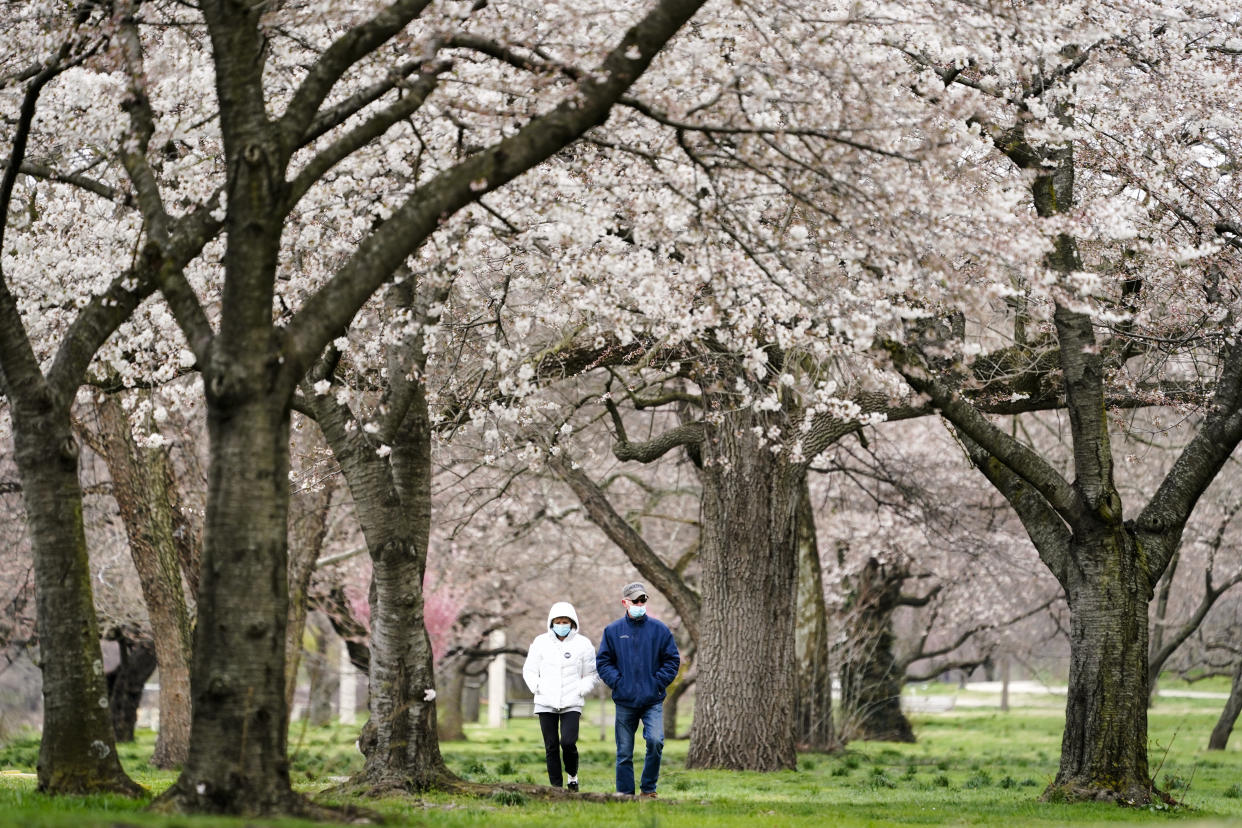 FILE - In this April 2, 2021, file photo, Janet Nemec, left, celebrates receiving her second vaccination dose with her husband Dale with a walk beneath blossoming trees along Kelly Drive in Philadelphia. Nearly half of new coronavirus infections nationwide are in just five states, including Pennsylvania — a situation that puts pressure on the federal government to consider changing how it distributes vaccines by sending more doses to hot spots. (AP Photo/Matt Rourke, File)
