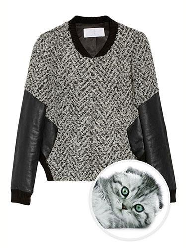 """<div class=""""caption-credit""""> Photo by: net-a-porter</div><b>Silver Tabby Scottish Fold Cat</b> <br> A Scottish Fold cat's silvery and black markings pair perfectly with Thakoon Addition's tweed bomber jacket. They both exude heathered excellence. Thakoon Addition Leather-Sleeved Tweet Bomber Jacket, $790; <a href=""""http://www.net-a-porter.com/product/378023"""" rel=""""nofollow noopener"""" target=""""_blank"""" data-ylk=""""slk:net-a-porter.com"""" class=""""link rapid-noclick-resp"""">net-a-porter.com</a> <p> <a href=""""http://www.marieclaire.com/health-fitness/advice/four-minute-workout?link=rel&dom=yah_life&src=syn&con=blog_marieclaire&mag=mar"""" rel=""""nofollow noopener"""" target=""""_blank"""" data-ylk=""""slk:Related: The 4-Minute Workout"""" class=""""link rapid-noclick-resp"""">Related: The 4-Minute Workout</a> <br> <a href=""""http://www.marieclaire.com/sex-love/men/nine-signs-he-is-cheating?link=rel&dom=yah_life&src=syn&con=blog_marieclaire&mag=mar"""" rel=""""nofollow noopener"""" target=""""_blank"""" data-ylk=""""slk:Related:"""" class=""""link rapid-noclick-resp""""><b>Related:</b></a> <span><b>9 Signs He's Cheating</b></span> </p>"""