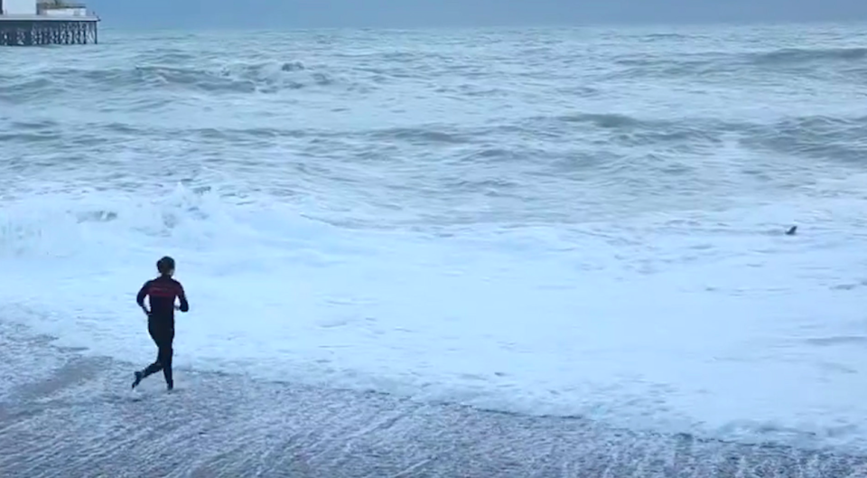 <em>The woman risked her life by running into the sea to rescue her dog (SWNS)</em>