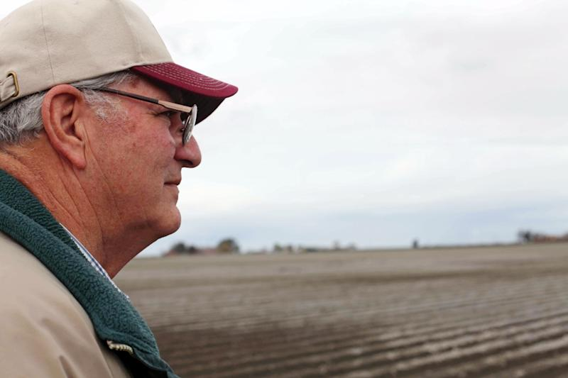 In this March 6, 2013 photo, farmer Frank DelTesta gazes at the field where he recently planted some sugar beets that will be processed into ethanol at a demonstration plant that's under construction, in Tranquility, Calif. DelTesta, who used to grow 150-acres of beets before the local sugar mill shut down, hopes his farming cooperative can build the nation's first commercial-scale beet bio-refinery. (AP Photo/Gosia Wozniacka)