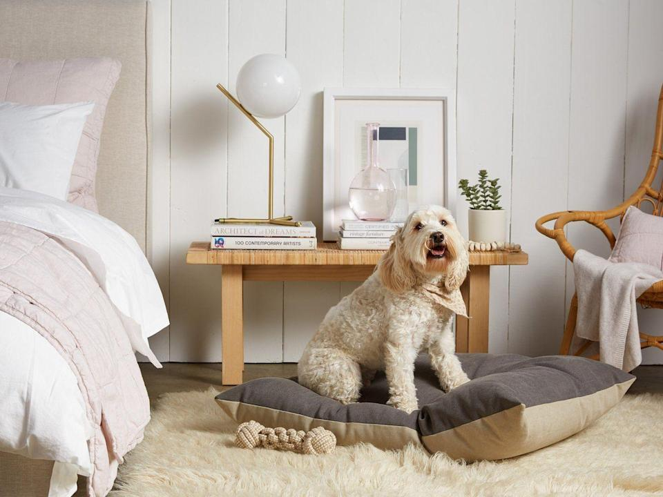 """<h3><strong>Stonewashed Canvas Pet Bed</strong></h3><p>Keep your pet's bedding inline with your own interior trends with this sleek stonewashed cotton-canvas, hypoallergenic, and water-repellent bed.</p><br><br><strong>Parachute</strong> Dog Bed, $129, available at <a href=""""https://www.parachutehome.com/products/dog-bed?variant=8697817989169"""" rel=""""nofollow noopener"""" target=""""_blank"""" data-ylk=""""slk:Parachute"""" class=""""link rapid-noclick-resp"""">Parachute</a>"""