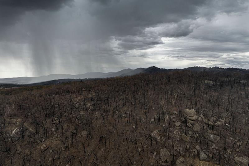 Pictured is rain falling from thunderclouds near Tamworth.