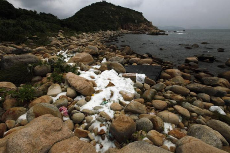 Plastic Pollution Is Outnumbering Baby Fish By Seven to One, Find Scientists