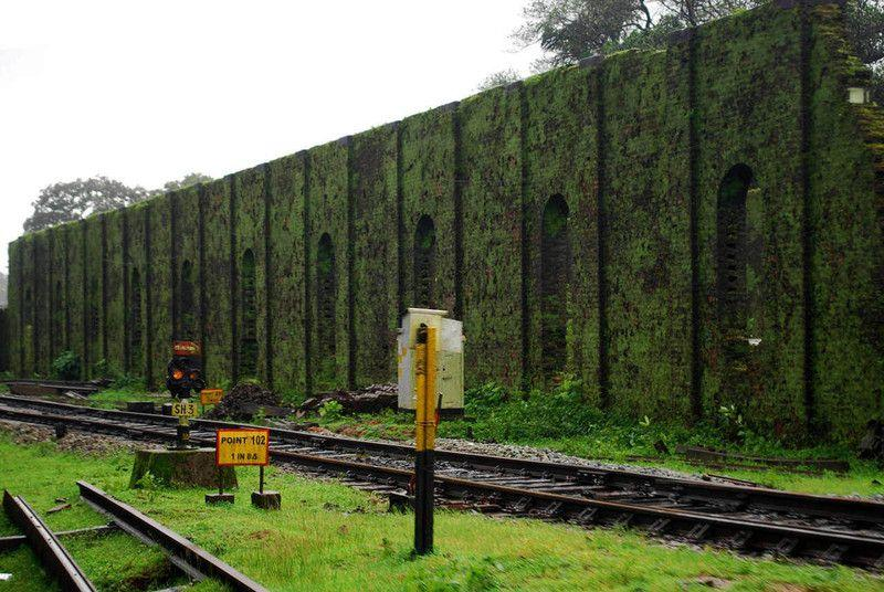 Covered with moss, the weather-beaten wall of the old steam loco shed.
