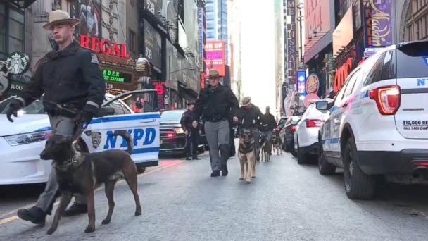 PHOTO: Police dogs marching from Times Square to Port Authority, Dec. 11, 2017, in New York City. (ABC)
