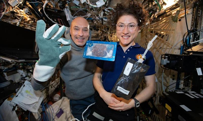 The International Space Station (ISS) commander, Luca Parmitano, and astronaut Christina Koch with milk and cookies on board the ISS