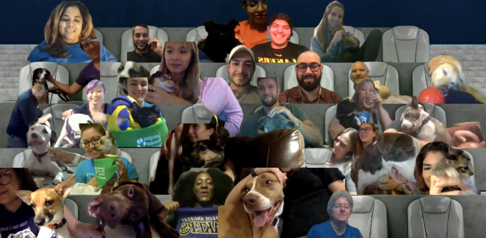 A screenshot of 30 adoptable pets and their fosters in virtual courtside seats. (Courtesy of Best Friends Animal Society)