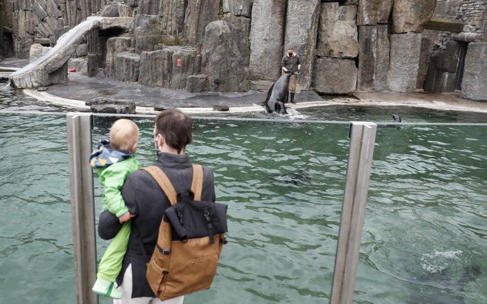 Visitors watch sea lions at their enclosure at the zoo in Prague, Czech Republic, Monday, April 12, 2021. The Czech government has agreed to start easing the tight lockdown, caused by the COVID-19 pandemic, in one of the hardest-hit European countries. Children up to the fifth grade will be back at schools while the stores selling clothes and shoes for kids, laundries, outdoor farmers markets, zoo and botanical gardens are reopened. (AP Photo/Petr David Josek)