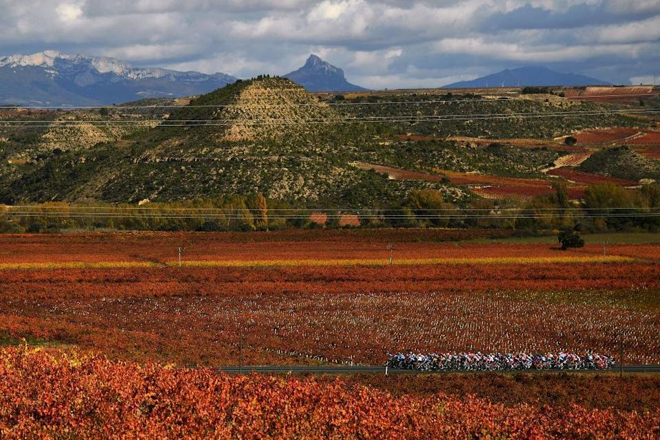 ALTODEMONCALVILLO SPAIN  OCTOBER 28 Peloton  Vineyards  Autumn  Landscape  during the 75th Tour of Spain 2020 Stage 8 a 164km stage from Logroo to Alto de Moncalvillo 1490m  lavuelta  LaVuelta20  on October 28 2020 in Alto de Moncalvillo Spain Photo by David RamosGetty Images