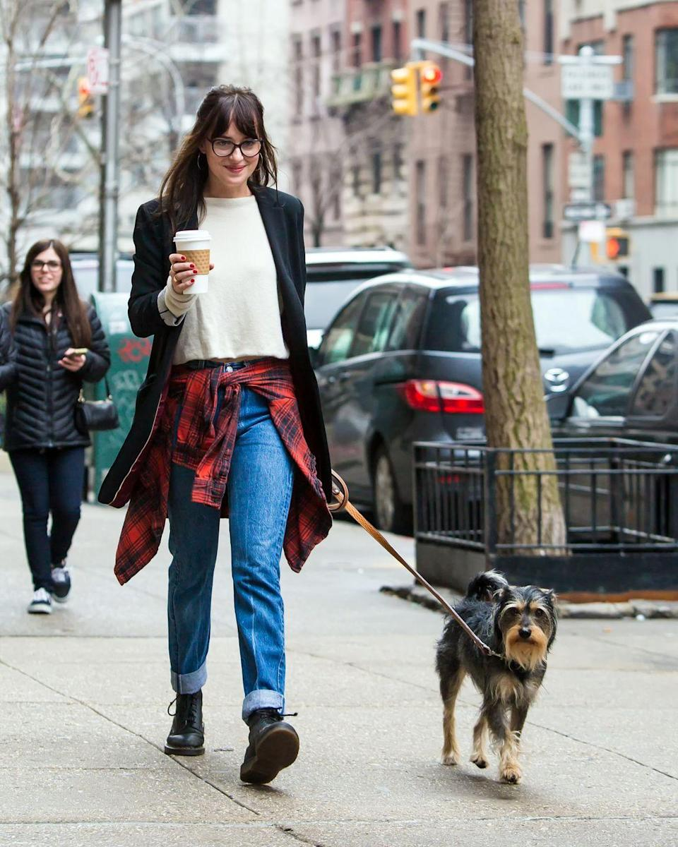 <p>The 50 Shades of Grey actress was seen walking her dog Zeppelin in New York City in 2015.</p>