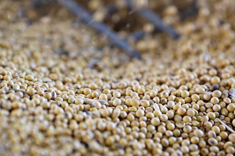 Giant Asia Food Company Eyes Soybean Expansion in Hard Times