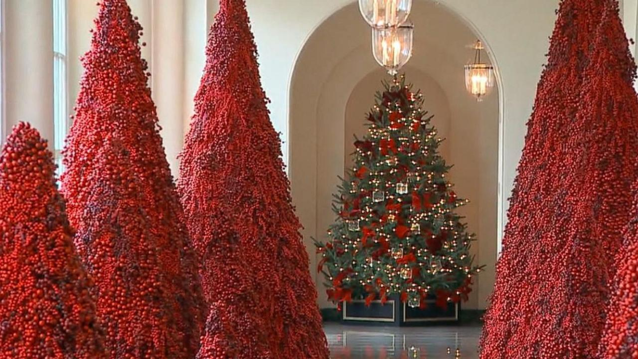 White House Christmas Decorations [Video]
