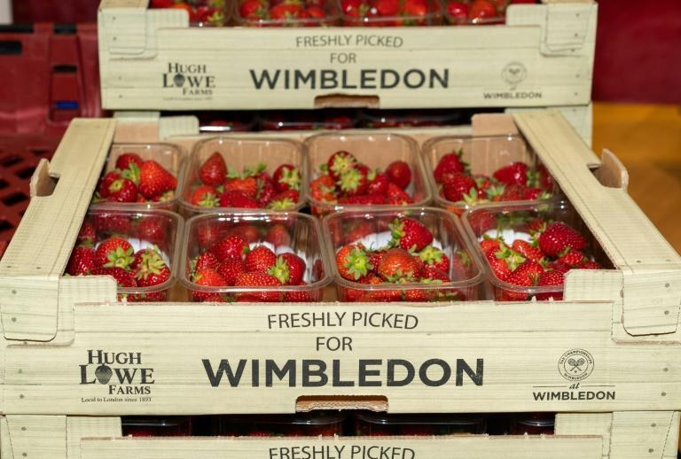 The names of the players who have dominated Wimbledon over the past three decades may have changed due to the passage of time but the strawberry supplier has remained the same