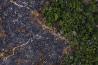 """FILE - In this Nov. 23, 2019 file photo, a burned area of the Amazon rainforest is seen in Prainha, Para state, Brazil. In Brazil, some climatologists argue that the Amazon rainforest will hit a """"tipping point"""" in the next 10 to 15 years. If too much rainforest is damaged, there will be less evapotranspiration and so less rainfall, and the biome would begin an irreversible process of degradation into tropical savannah, compromising its role as a carbon sink. (AP Photo/Leo Correa, File)"""