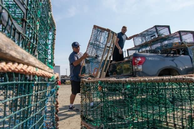 Mi'kmaw First Nation releases catch numbers from lobster fishery