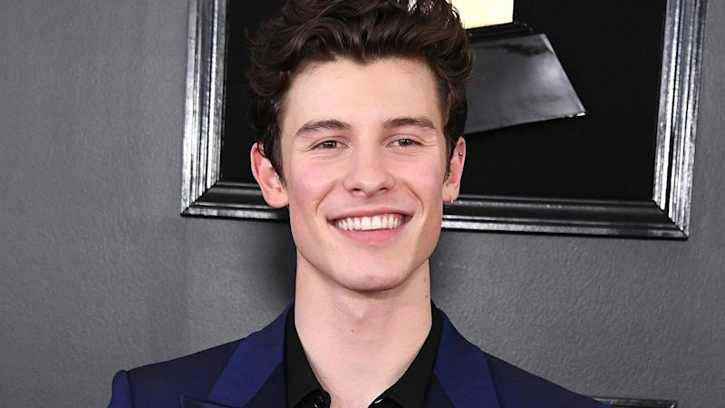 Shawn Mendes Poses in His Underwear for New Calvin Klein Modeling Campaign 87dabfe150