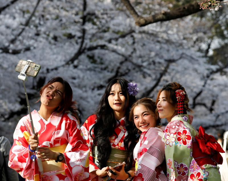 FILE PHOTO: Blooming cherry blossom in Tokyo
