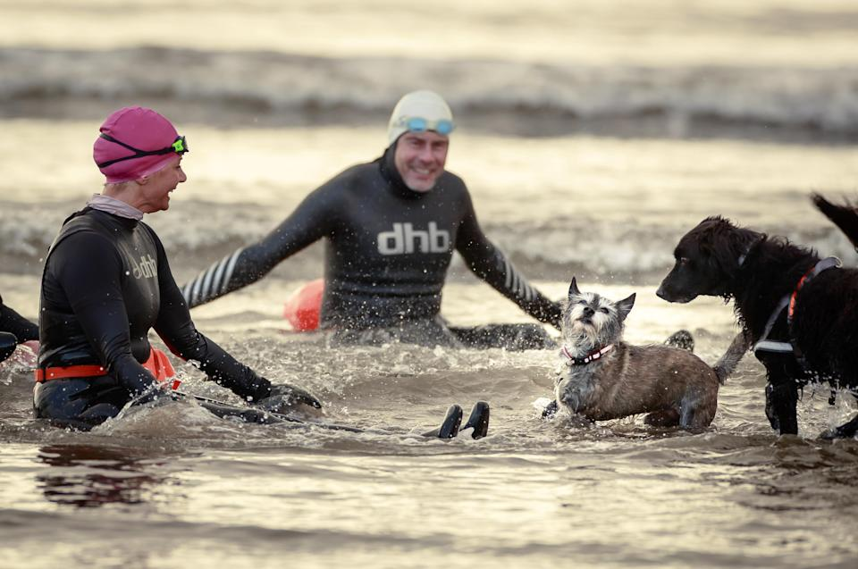 Locals and their dogs take a new year's day dip in the sea at Scarborough in North Yorkshire (Danny Lawson/PA)