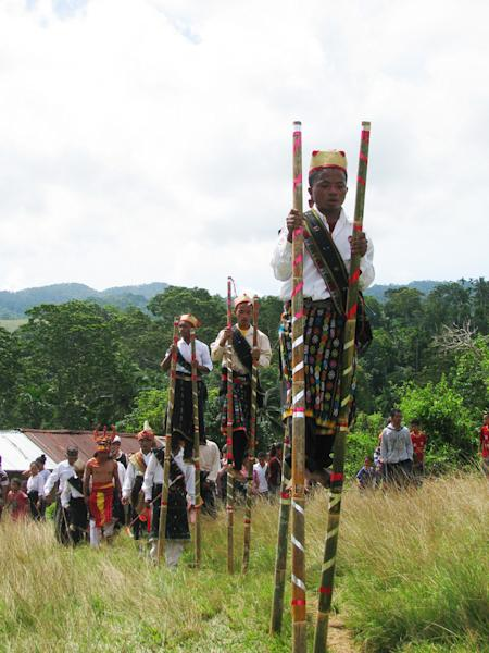 Away we go: Local high school students are walking on bamboo stilts in the traditional Wai Doka dance in Flores, East Nusa Tenggara.